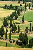 Monticchiello, Val d'Orcia, UNESCO-Welterbestätte, Toskana, Italien, Europa