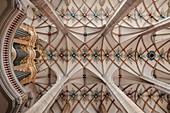 Mittelschiff mit Kreuzgewölbe und Silbermann Orgel Freiberger Dom St Marien, UNESCO Welterbe Montanregion Erzgebirge, Sachsen
