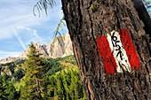 Trail sign over Colfosco, Alta Badia, Dolomites, South Tyrol, Italy
