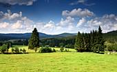 on Vodni nadrz Lipno (lake), Southern Bohemian Forest, South Bohemia, Czech Republic
