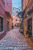 Cobblestone alleyway between village buildings, Croatia