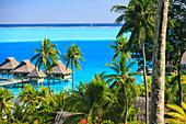 Palm trees overlooking tropical resort, Bora Bora, French Polynesia