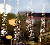 Dried Mushrooms on Display,New York, New York, United States