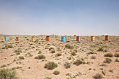 Colorful Row of Barrels in the Desert,Holbrook, Arizona, United States