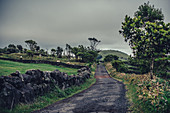 Pico, Azores, Portugal, Atlantic, Atlantic Ocean, Europe,