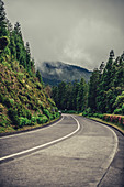 Road in the Azores, Sao Miguel, Azores, Atlantic Ocean, Portugal, Europe
