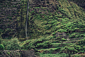 Waterfall at Faja Grande, Faja Grande Flores, Azores, Portugal, Atlantic Ocean, Atlantic Ocean, Europe,