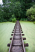 Overgrown rail in the disused amusement park in the Plänterwald, Treptow, Berlin, Germany