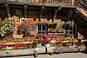 Flowers, wooden house, Turracher Höhe, Styria, Austria