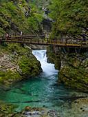 Vintgar Klamm bei Bled, Oberkrain, Slowenien