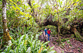 Trekking on the tropical island of Reunion in the Indian Ocean, which is part of France