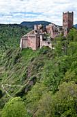 Blick auf die Burgruine von St. Ulrich bei Ribeauville,  Haut-Rhin, Grand Est, Elsass, Frankreich, Europa