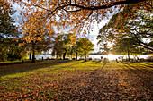 Menschen genießen den Sonnenuntergang im Herbst an der Aussenalster in Hamburg, Norddeutschland, Deutschland