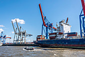 Large and small ships on the Elbe in the port of Hamburg, Hamburg, northern Germany, Germany