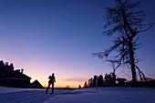 Frau beim Langlaufen läuft in der Morgendämmerung, Skifernwanderweg Schonach-Belchen, Schwarzwald, Baden-Württemberg, Deutschland