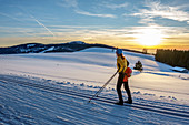 Woman cross-country skiing looks into sunset, Schonach-Belchen skiing trail, Black Forest, Baden-Württemberg, Germany