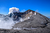 Cloud rises over Mount Etna volcano crater, Monte Etna UNESCO World Heritage Site, Etna, Etna, Sicily, Italy