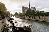 France, Paris, area listed as World Heritage by UNESCO, restaurant boat in front of Ile Saint Louis, Notre Dame Cathedral under the rain