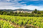 France, Vaucluse, Parc Naturel Regional du Luberon (Natural Regional Park of Luberon), Lourmarin, labelled Les Plus Beaux Villages de France (The Most Beautiful Villages of France), the village and the massif of Lubéron in the background