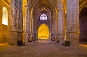 France, Aude, the nave of the abbey church Sainte Marie de Fontfroide cistercian abbey