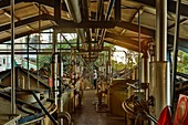 France, Reunion Island (French overseas department), Savanna, factory of Bois Rouge, industrial plant rum distillery