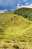 France, Puy de Dome, area listed as World Heritage by UNESCO, Parc Naturel Regional des Volcans d'Auvergne (Regional Natural reserve of the Volcanoes of Auvergne), Chain of Volcanic hills, Orcines, walkers at the bottom of the crater of the Volcanic hill Pariou, background Puy de Dome