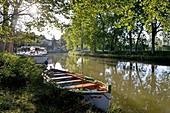 France, Herault, Cruzy, Canal du Midi listed as World Heritage by UNESCO, place says The Crusade, traditional boat moored in border of a path with background plane trees