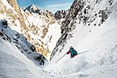 Skitourengeherin bei der Abfahrt von der Roten Rinnscharte in bestem Pulverschnee, Wilder Kaiser, Tirol, Österreich