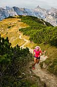 Trailrunner läuft in grandiosem Karwendel-Panorama zum Gipfel des Bärenkopf, Achensee, Tirol, Österreich