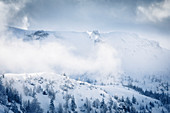 Snow-covered winter landscape and fog in the Karwendel Mountains, Pertisau, Tyrol, Austria
