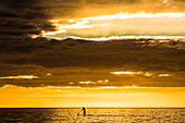Stand-up paddling in the Gulf of Mexico at sunset, Fort Myers Beach, Florida, USA