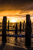 Silhouette of weathered wooden piles on the beach from the Gulf of Mexico at sunset, Fort Myers Beach, Florida, USA