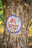 2019, Govardhan, Vrindavan, Uttar Pradesh, India, The name of the deity Radha is painted on trees and houses all over Vrindavan