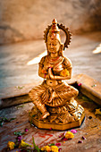 2019, Ter Kadamba, Govardhan, Vrindavan, Uttar Pradesh, India, Shiva Temple Asheshvara Mahadeva, Parvati (Shiva's wife)