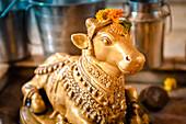 2019, Ter Kadamba, Govardhan, Vrindavan, Uttar Pradesh, India, Shiva Temple Asheshvara Mahadeva, Taurus Nandi