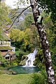 Cascade des Tufs in the Cirque du Fer a Cheval near Arbois, Jura, Franche Comté, Eastern France
