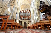 Organ and pulpit in the Saint Maximin Cathedral, Provence, France