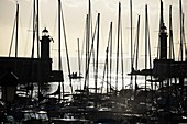 View with sunrise of the sea with harbor sailing boats and lighthouses, Bastia, Northern Corsica, France