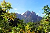 Berg bei Ota im Bergland zwischen Evisa und Porto, West- Korsika, Frankreich