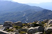 small mountain road and view to the sea from the Plateau du Cuscio near Quenza in Alta Rocca, southern Corsica, France