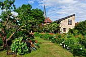 Garden in Geltow, municipality of Schwielowsee, Havelland, Brandenburg, Germany