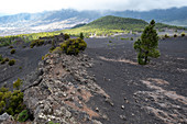 Volcano landscape at Llanos del Jable, La Palma, Canary Islands, Spain, Europe