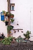 Original mini garden in the fishing village of la Bombilla, La Palma, Canary Islands, Spain, Europe