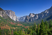 View of the woods and rocks of Yosemite National Park from the Viewpoint Tunnel View, USA