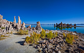South Tufa limestone towers on Mono Lake with blue sky, California, USA