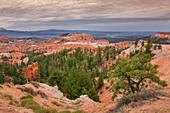 Bryce Canyon in der Dämmerung, USA\n