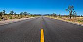 Straße im Joshua Tree Nationalpark, Kalifornien, USA