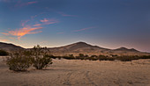Sand dunes of Kelso in the Mojave National Park at sunset