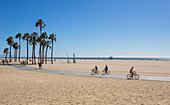 Venice beach in Los Angeles with palm trees and cyclists, USA