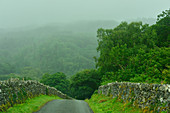 Road in the fog surrounded by stone walls at Rhydlanfair, Wales, England